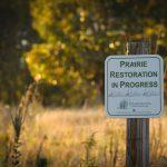 Prairie Woods