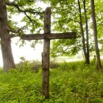 cross in woods